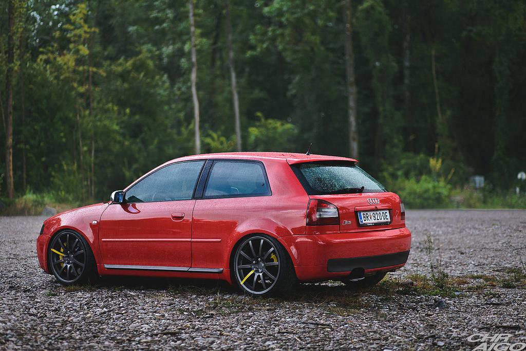 Audi-S3-Tuning-8L.jpg