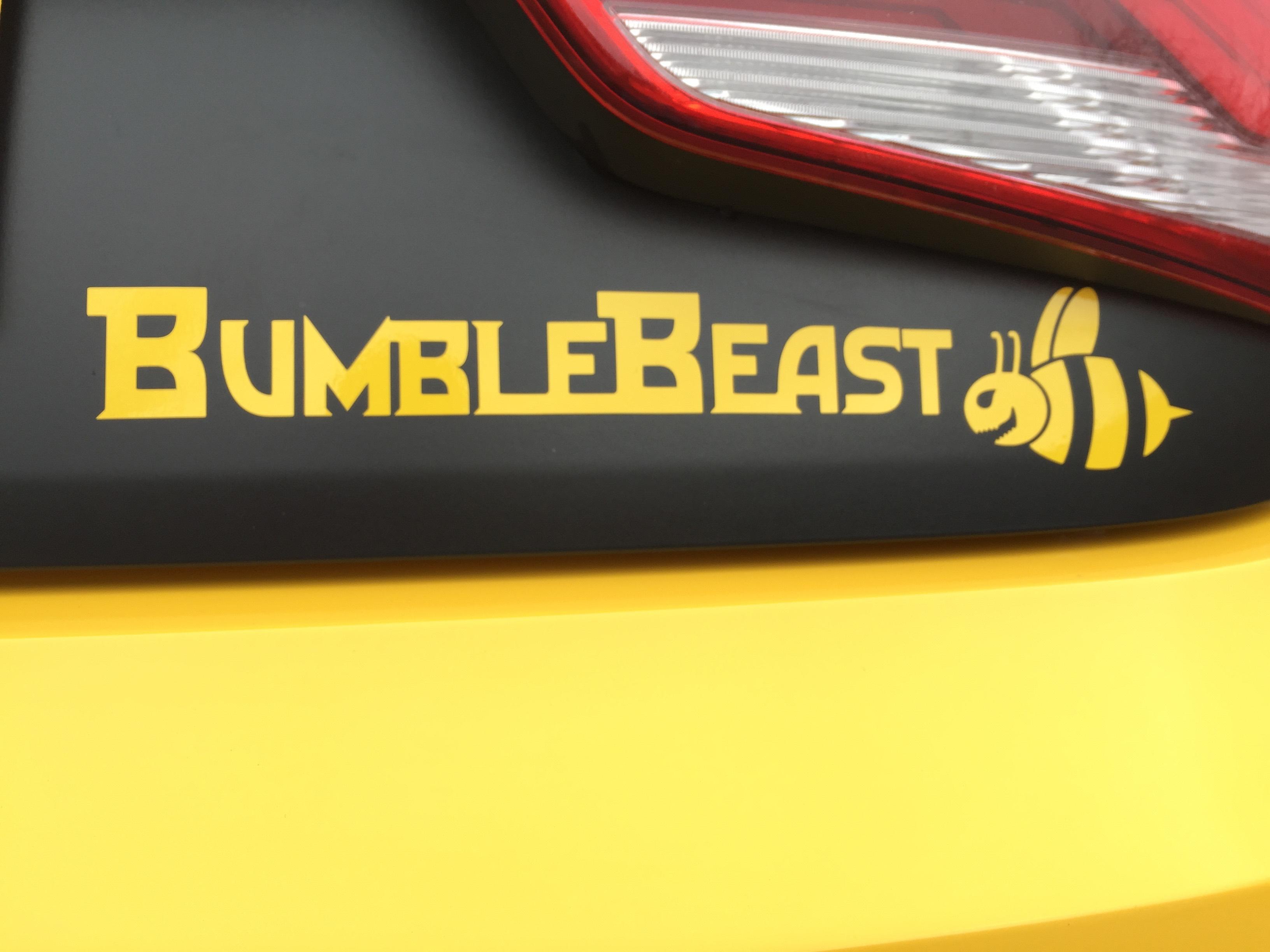 BumbleBeast - 1.jpg