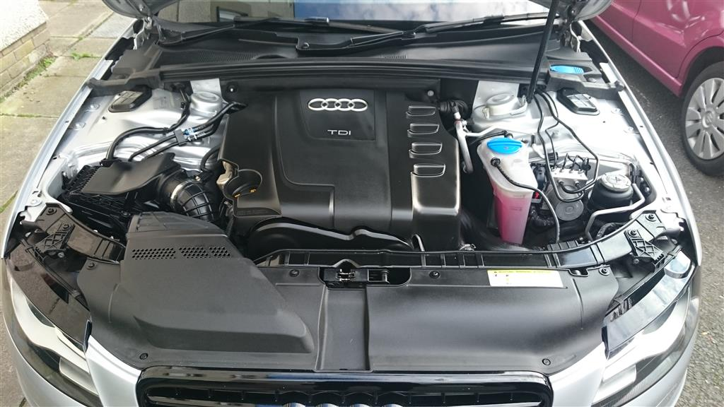 Engine Cleaned.JPG