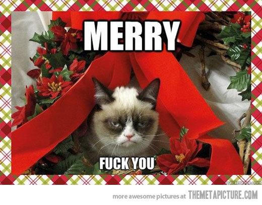 merry-christmas-funny-pics-3.jpg