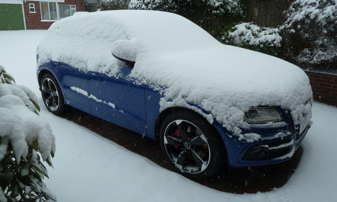 SQUIFFY snow 24121.JPG
