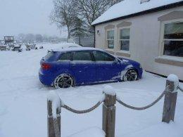 SNOW_BLUEY 750.JPG