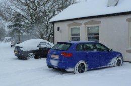 SNOW_BLUEY 749.jpg