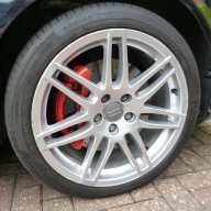 Audi-Rog