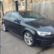 Audi Steve